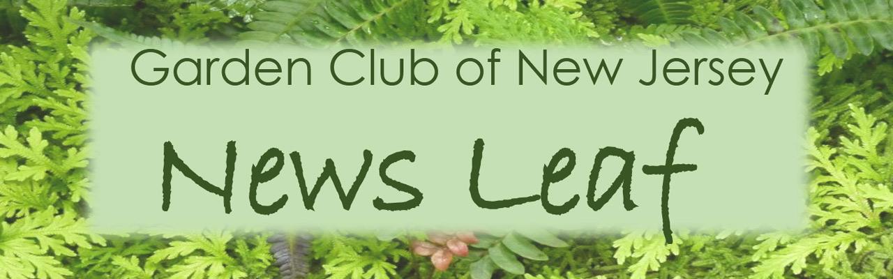 News Leaf newsletter