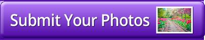 share your photos